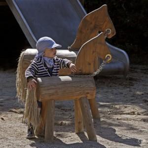 4.24135_Pony_001