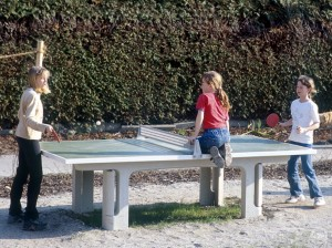 7.89000_Table Tennis Table_001